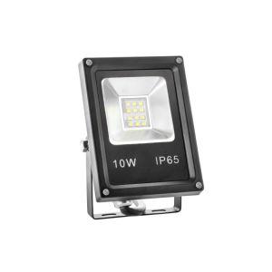 Economic 10W LED Floodlight IP65 pictures & photos