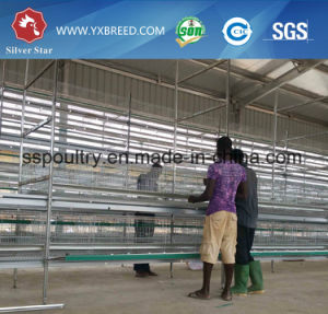 Poultry Chicken Farming Layer Battery Cage pictures & photos