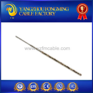 Lead Wire Type Mg UL 5107 450c High Temperature Wire pictures & photos