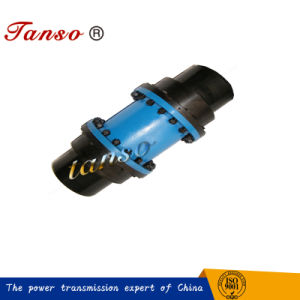 China Supplier Drum Teeth Coupling with High Backlash pictures & photos