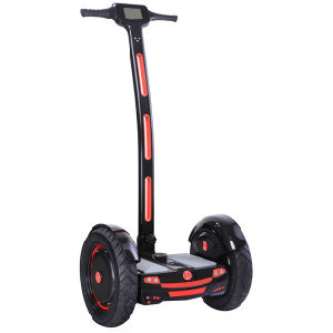 17inch Two Wheels Electric City Scooter with LCD Screen