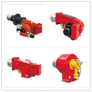 Double Type Oil and Gas Burner Apply for Healing pictures & photos