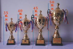 Hot Sale Customized Resin Trophy Cup pictures & photos