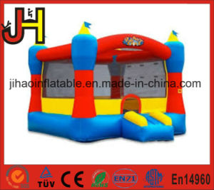 Inflatable Jumping Castle for Amusement Park pictures & photos