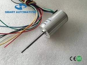 28bl 28mm BLDC Motor and Controller