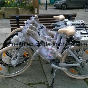 European Favor 250W/350W/500W Retro and Neo Style Lady Step Through Electric Bike/E Bicycle/Pedelec Ce pictures & photos