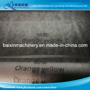 2 Colors Nonwoven Printing Machine pictures & photos