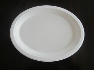 Biodegradable Unbleached Sugarcane Bagasse Food Plate pictures & photos