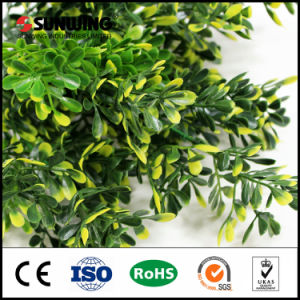 Eco-Friendly Green Artificial Fabric Spray of Plant with Fireproof Test pictures & photos