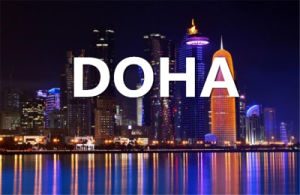 Shipping From Qingdao, China to Doha, The State of Qatar pictures & photos