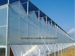 Factory Price of Agricultural Equipment PC Board Greenhouse pictures & photos