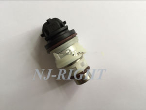 Fuel Injector for Chevrolet, GMC, Buick pictures & photos