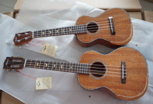 China Aiersi Tenor All Solid Mahogany Gloss Ukulele for Adults pictures & photos