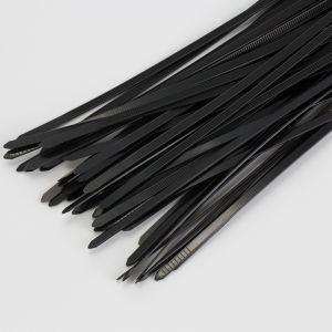 Self-Locking Nylon 66 Cable Ties pictures & photos