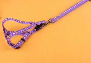 Pet Products Supply Dog Puppy Colorful Leash (L004) pictures & photos