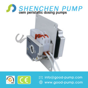 New OEM Peristaltic Pump 6V 12V 24V DC, Best Sell Step Motor Peristaltic Pump Prices pictures & photos