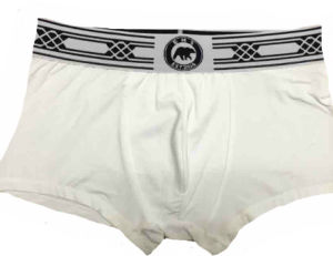 Man′s Underpants/Boxer/Underwear Under Pants pictures & photos