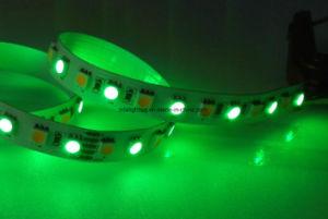 12V/24V 72LEDs/M RGBW/White LED Ribbon Lighting
