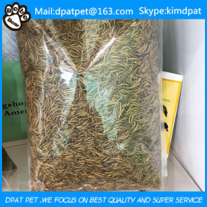 Lower Price High Quality Dried Mealworms Pet Food Chicken Feed Birds Food pictures & photos