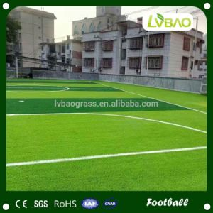 Ornamental Design Eco-Friend Mini Football Artificial Grass pictures & photos