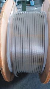 Fiber-Glass Wrapping Film Covered Rectangular Copper (Aluminum) Wire. pictures & photos