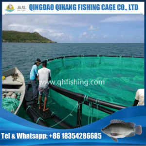 Aquaculture HDPE Floating Pipe Fish Farming Cage pictures & photos