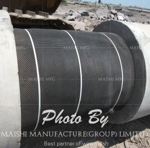 HDPE Mesh for Pipeline Coating pictures & photos