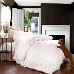 High Thread Count Cotton Down-Proof White Goose Down Duvet (DPF10346) pictures & photos