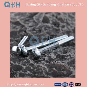 DIN603 Carriage Bolts (M5-M20 Cl. 4.8/6.8) pictures & photos