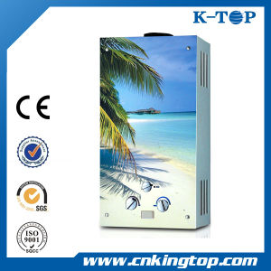 High Quality Hot Sale Gas Water Heater pictures & photos