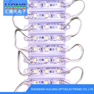 Hl-3912 DC12V 0.6W SMD LED Module pictures & photos