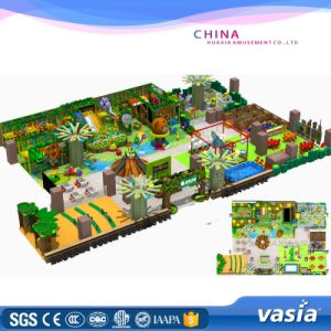 CE Certificate Customized Design Indoor Park Indoor Playground Equipment pictures & photos