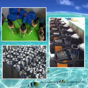 180W-3000W Solar Deep Well Pump, Pool Pump, Irrigation Pump pictures & photos