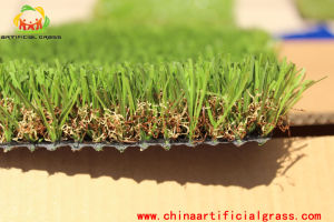 Competitive Priced and Natural Realistic Appearance Artificial Grass