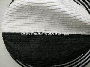 Paper Braid Fefora Paper Hat pictures & photos