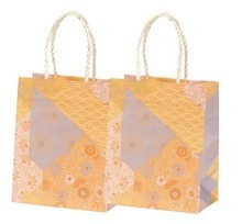 Beautiful Design of Paper Gift Bag for Clothes