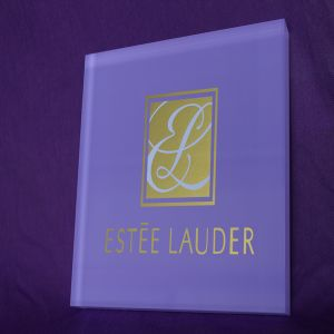 Custom Acrylic Logo Block, Acrylic Brand Block pictures & photos