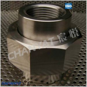 BS3799 Stainless Steel Screwed Union A182 (S31727, S32053) pictures & photos