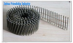 Coil Nail pictures & photos