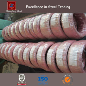 Spring Stainless Steel Wire with Bright Treatment (CZ-W50) pictures & photos