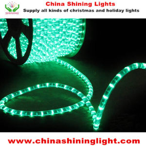 Outdoor Indoor Decoration Waterproof LED Lights pictures & photos