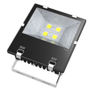 Classic Model COB 200W High Power LED Flood Light pictures & photos