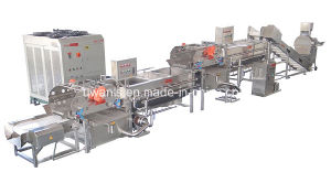 Industrial Fruit Washing Process Line Machine pictures & photos