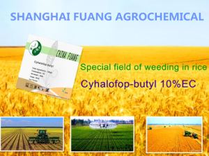 New Agrochemical Bio Pesticide Herbicides Cyhalofop-Butyl 97%Tc, 10%Ec, 20%Wp pictures & photos