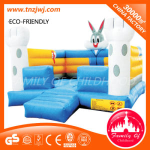 2016 Newest Design Indoor Inflatable Playground Equipment Inflatable Bouncer Castle pictures & photos