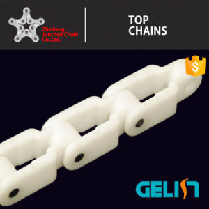 2600 2600tab Plastic Conveyor Case Chain/Keel Chain/Crate Conveyor Chain pictures & photos
