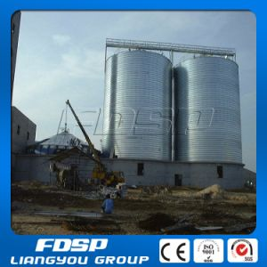 Professional Design Storage Solution Project Chicken Feed Storage Silo pictures & photos