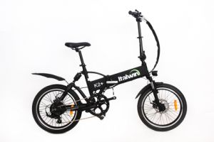 Folding Electric Bike TDM1203z pictures & photos