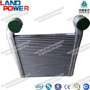 HOWO Truck Intercooler Sinotruk Truck Parts Wg9925530127