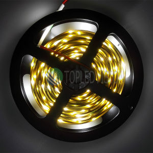 Hight Bright Flexible SMD2835 LED Strip Light 30LEDs/M, 12V, 24V DC pictures & photos
